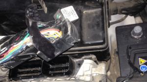 עלוקה של קוברה המותקנת על מחשב הרכב -יונדאי אקסנט